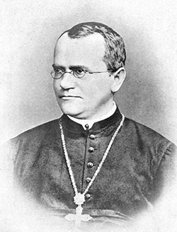 Gregor Mendel was an Austrian monk from the 1800s who  discovered how organisms pass traits from one generation to the next.