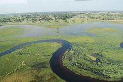 The Okavango Delta in Botswana. Click for more detail.