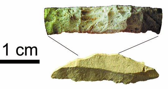 Microliths like this one from Pinnacle Point Site 5-6 were likely used as inserts in weapon tips. The top part of the stone blade has very fine scars that make it dull and would have been glued into a shaft or handle. Photos by Ben Schoville.