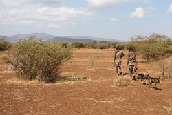 Hunting can take up a lot of time for groups like the Hadza.