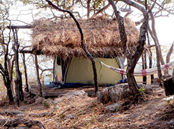 "This tent, with a ""roof"" of branches and grasses, was home to ASU graduate student Samantha Russak for one year while she studied the habitats of chimpanzees in Tanzania. Image by Samantha Russak."