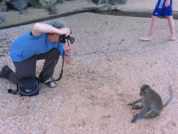 Some primates aren't camera shy.