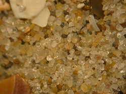 This sand is from the Netherlands. The grains are 0.2-0.5 mm in size. Image by Renée Janssen.