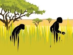 How climate shaped human evolution image