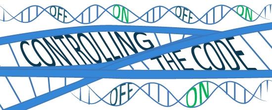 epigenetics illustration