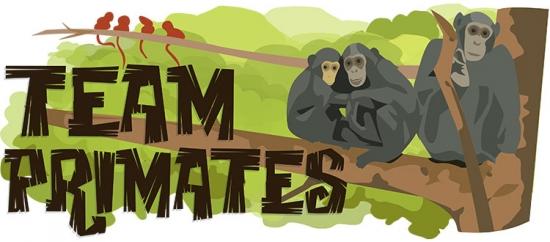 Team Primates Header Illustration