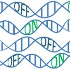 epigenetics thumbnail